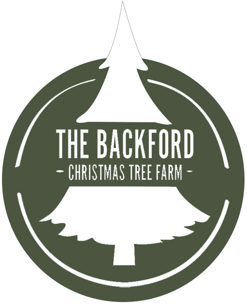 Backford Christmas Tree Farm